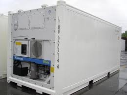 white 20 foot refrigerated container on land
